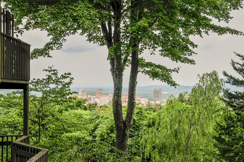 asheville nc skyline through the trees