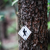 Hiking trail sign on the forest paths