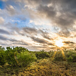 beautiful sunrise over texas hills landscape