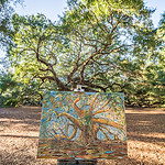 painters drawing of an old angel oak in charleston SC