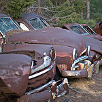 a row of collected rusty abandoned automobiles