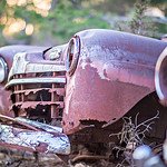old rusty abandoned automobile in the woods