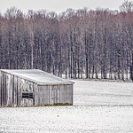 roadside trees and farms in michigan during winter