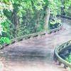 A wooden golf cart pathway bridge curves around trees