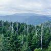 View from Clingman's Dome in the Great Smoky Mountains National Park