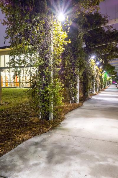 citty alley sidewalk at night