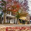 autumn season in downtown of white rose city york suth carolina