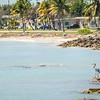 beautiful beach and ocean scenes in florida keys